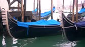 canal : Rows of traditional wooden gondolas Stock Footage