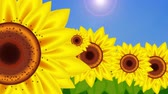 kwiaty : Sunflowers popping up in a field 4K