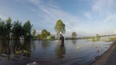 hyacint : Fishermen casting for fish in the flood season. Dostupné videozáznamy