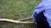 младенец : A child plays with sticks in a park