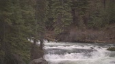 Footage of Benham Falls outside of Bend, OR. Stock Footage