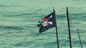 skull : Jolly Roger skull and crossbones flag flapping in breeze at sea Stock Footage