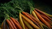 veg : Passing Bunches Of Carrots