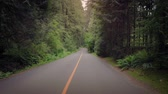 dusk forest : Flying Over Rural Road At Sunset Stock Footage