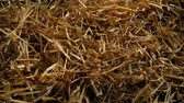 széna : Passing Straw Pile Closeup