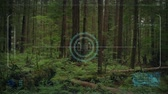 recon : Drone HUD POV Rising From Forest Floor