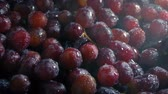 vinho tinto : Juicy Grapes Getting Sprayed With Fine Mist Stock Footage