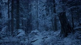 леса : Forest Slope With Snow Falling In The Evening