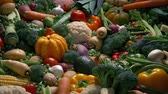 veg : Harvest Vegetables Moving Shot