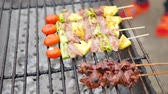 wood grill : Roasted Grilled barbecue and chicken liver on charcoal stove Stock Footage