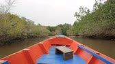 krab : Boat view moving forward nearly mangrove forest at the river estuary the conserve sea nature environment
