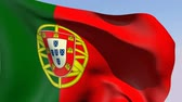 independence : Flag of Portugal Stock Footage