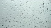 Rain drops on window glass,Water droplets on glass Стоковые видеозаписи