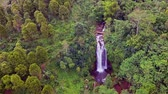 уборная : aerial shot away and tilt down shot with drone above beautiful Bali paradise waterfall and jungle rainforest in Asia travel destination and summer vacations trip concept