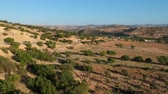 marrocos : Beautiful Nature of Morocco on empty street and argan trees near Marrakech by Drone from above
