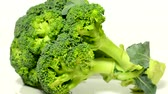 single broccoli : vegetables - broccoli - white background studio