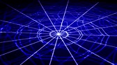 сложный : white concentric web on a blue background approaching and rotating Стоковые видеозаписи