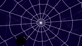 concentric cobwebs on a blue background, spider crawling towards the center Stock Footage