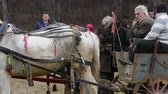 цыган : Todors Day. Feast of the horses. Small town in Bulgaria Pavlikeni 28. 02. 2015. Horses with carts are waiting for their order to participate in the race. Стоковые видеозаписи