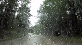yağmurlu : Video from a car, moving forward. A gloomy, rainy day. The path through the forest.