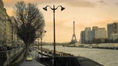 rivet : View of the Eiffel Tower from the roadside of the Seine River Stock Footage