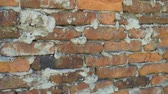 cantaria : Texture of old red brick wall background Vídeos