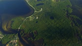 tampa : Mangrove Forest Aerial, Tampa Bay