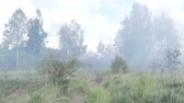 haki : An armored personnel carrier in the smoke. The war in the field. Stok Video