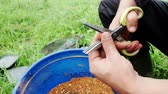 pellets : Fish bait colored balls. Fishing lure. Close up bait for fish on summer fishing Stock Footage