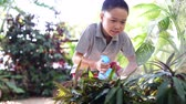 terra : Young Thai boy spray water to the plant in his garden at home. Earth day concept.