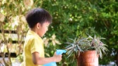 terraço : Young Thai boy spray water to the plant in his garden at home. Earth day concept.