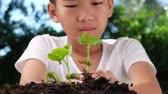 reforestation : 4k close up zoom out from young seedling in boy hands