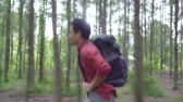 freizeitpark : Hiker Asian backpacker man on hiking adventure feeling freedom walking in forest, Male enjoy his holidays near lots of tree. Lifestyle men travel and relax in freetime concept.