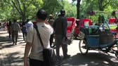 vyjadřující : New York, June 1, 2017: Rickshaw operators are having an animated conversation in Central Park. Dostupné videozáznamy