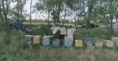 lucht : Apiary with camera at length
