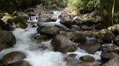 The mountain stream flows downward with cascades Vídeos