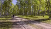 maraton : Girl running in the sunny morning forest. Sport Wideo