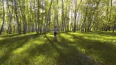 dürtmek : Girl running in the sunny morning forest. Sport Stok Video
