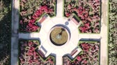 obrazy : Aerial view of a rose garden