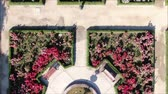 czerwony : Aerial view of a rose garden