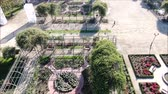 czerwona róża : Aerial view of a rose garden