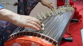 dedo humano : Japanese traditional instrument koto plays Stock Footage