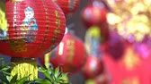 domorodý : Chinese new year lanterns with blessing text mean happy ,healthy and wealth.