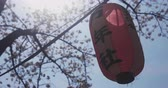 posição : Cherry bloom and lantern near Kanda river in Tokyo