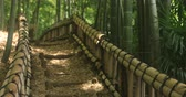 bamboo forest : Stairs at bamboo forest in Chikurin park front isow focus Stock Footage