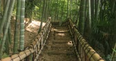 posição : Stairs at bamboo forest in Chikurin park middle shot