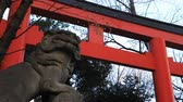 religious symbols : Statue guardian dog at Hanazono shrine in Tokyo