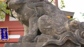 guardian dog : Statue guardian dog at Kanda shrine in Tokyo
