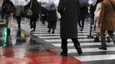 зонтик : Walking people at Shibuya crossing in Tokyo rainy day