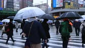 jour de pluie : Walking people body parts at the crossing in Shinjuku Tokyo rainy day